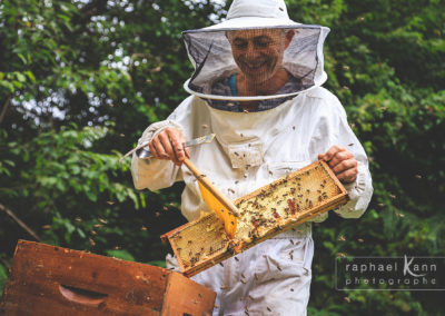 terroir-pyrenees-miel-ariege-apiculteur-abeilles-raphael-kann_6329